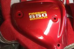 BSA-red-4