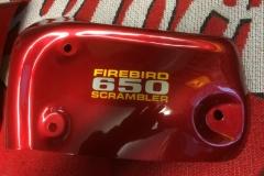 BSA-red-5
