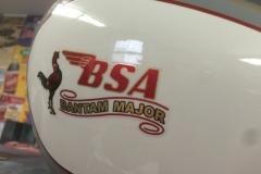 BSA-white-1