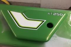 japan-green-11