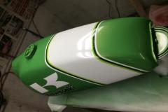 japan-green-7