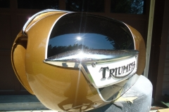 triumph-gold-black-2