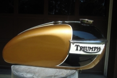 triumph-gold-black-3