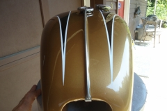 triumph-gold-black-4