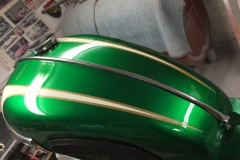 triumph-green-white-6